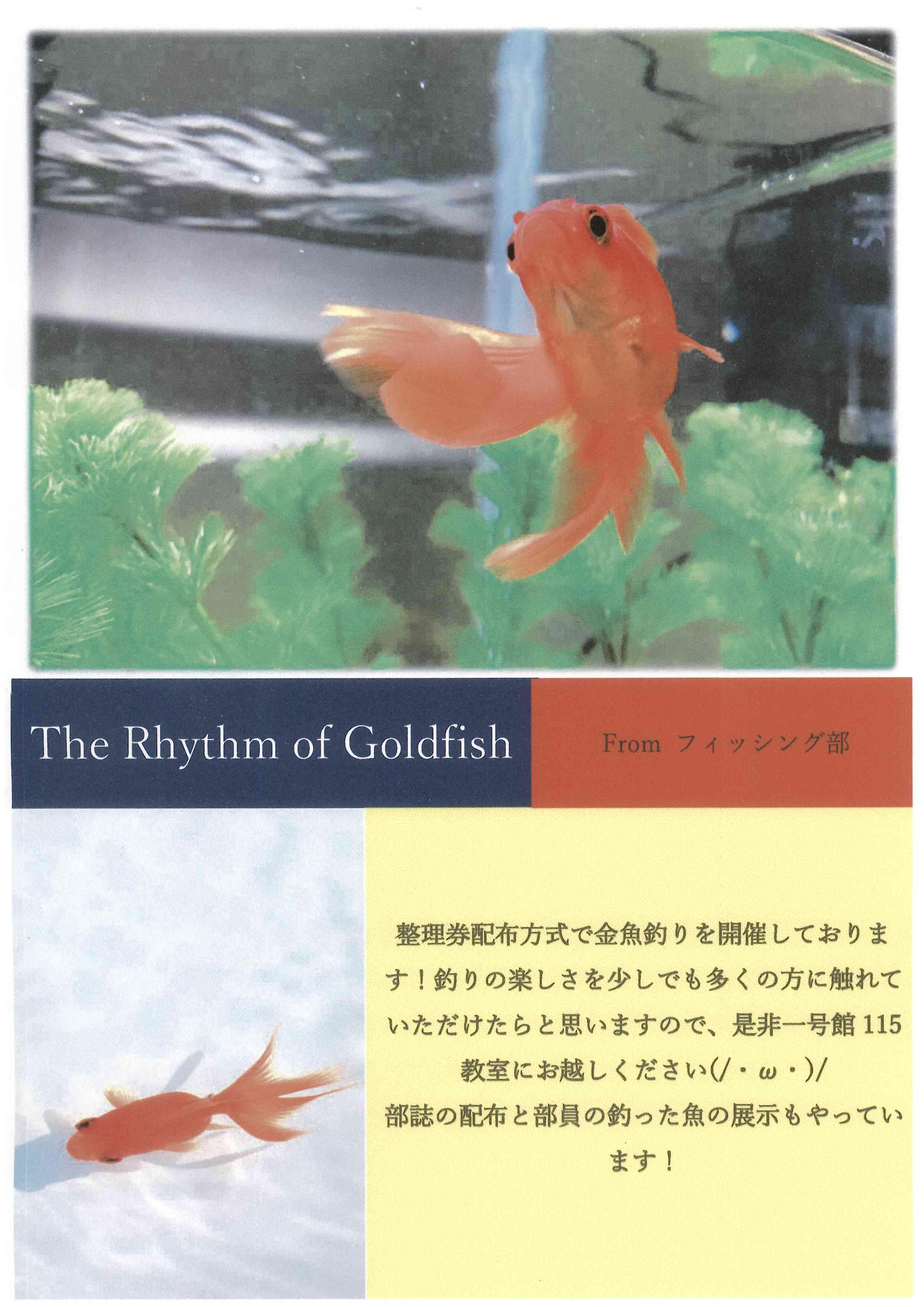 http://www.zushi-kaisei.ac.jp/news/a47c8231e106935153064a87f1f3d251f2284bf2.jpg