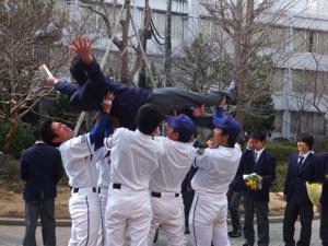 baseballdoage.jpg