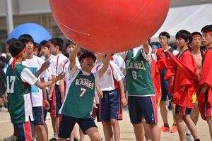 20140517体育祭③.jpg