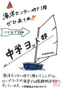 ヨット部1.jpg